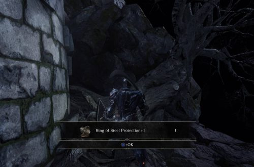 Прохождение Dark Souls 3: Заброшенные могилы (все секреты)