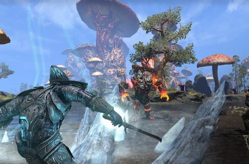 Билд Warden Tank для Elder Scrolls: Online