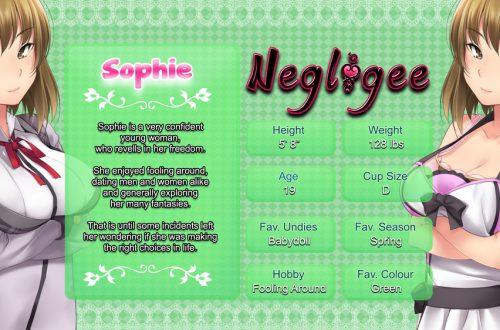 Прохождение Negligee: Love Stories