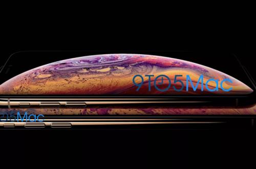 Apple случайно раскрыла дизайн новых iPhone. Посмотрите, как они выглядят