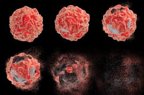 Найдена безопасная альтернатива химиотерапии