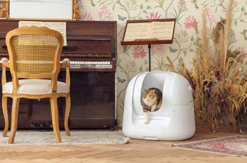 На выпуск кошачьего туалета Footloose с искусственным интеллектом всего за три дня собрано более 500 000 долларов