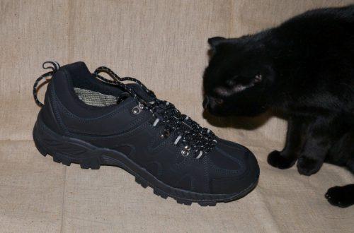 Bona - осенне-весенние кроссовки.