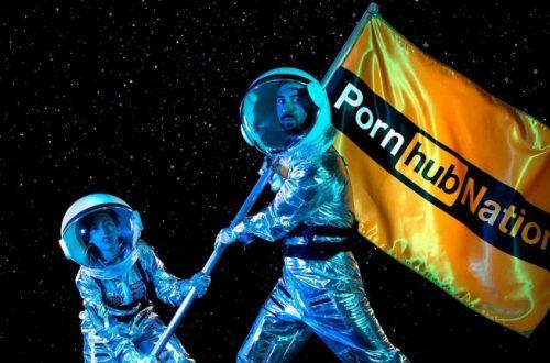 Порносайт Pornhub подвел итоги года — Fortnite стала вторым по популярности запросом, но в России предпочитают Overwatch