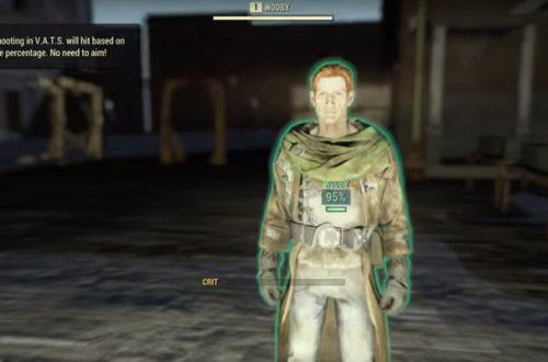 Геймеры нашли в Fallout 76 «Комнату разработчика» с единственным NPC в игре