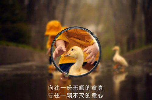 Галерея дня: Huawei продолжает дразнить «суперзумом» во флагманских камерофонах Huawei P30 и P30 Pro