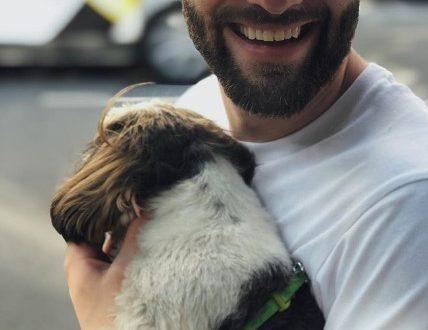 """""""Бесит"""": Дмитрий Шепелев рассказал о сложностях перелётов с собакой"""