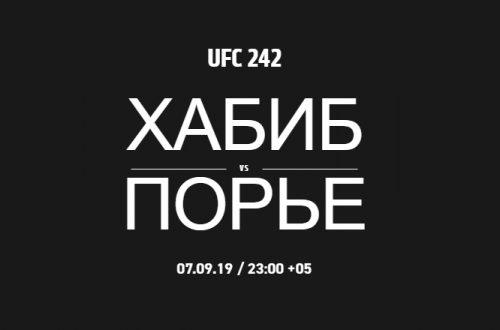 Хабиб Нурмагомедов следующий бой когда дата 2019