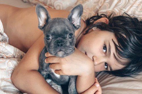 """""""Назвали Картошкой"""": Анфиса Чехова поблагодарила поклонников за предложенные имена её новой собаке, но 7-летнего сына не переубедила"""