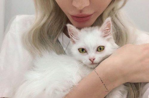 Кто фотографировал?: Алёна Шишкова заинтриговала романтическим пикантным фото из ванной