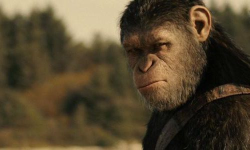 Подтвержден новый фильм «Планета обезьян»