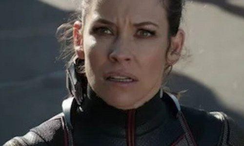 Эванджелин Лилли исключат из киновселенной Marvel из-за высказывания
